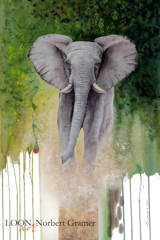 Kavango NEWS: Oil & Ivory, 2021